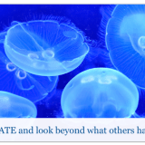 Slide – Innovate and Look Beyond (Jellyfish)